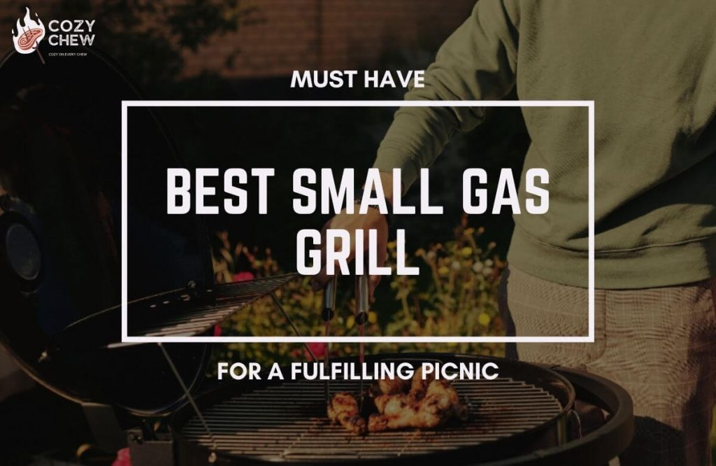 best-small-gas-grill-feature